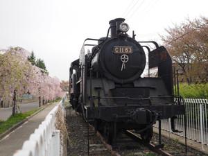 P4290093r