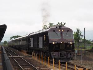 P5310045r