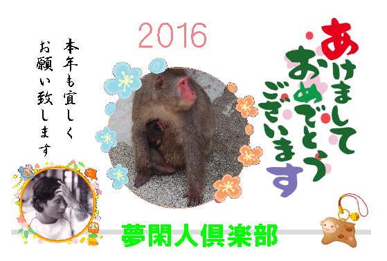 2016_2